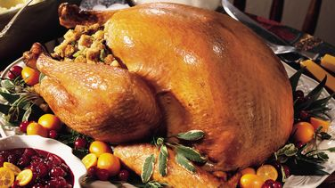 Roast Turkey with Sausage-Apple Stuffing