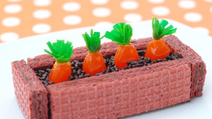 Fruit Gushers™ Carrot Garden
