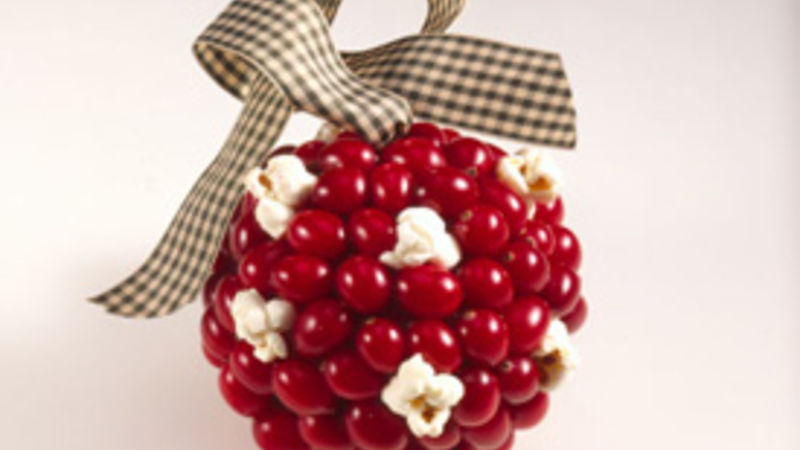 Cranberry Kissing Ball