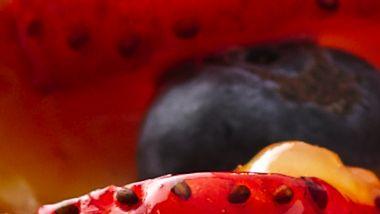Glazed Berry Tart
