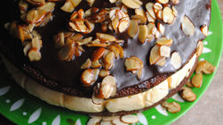 Chocolate Ice Cream Cake with Candied Almonds