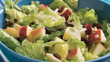 Romaine Salad with Apples and Cranberries