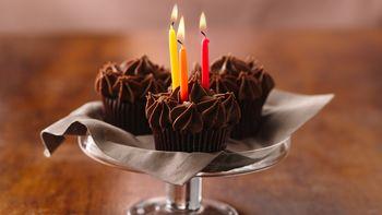 Chocolate Sour Cream Cupcakes