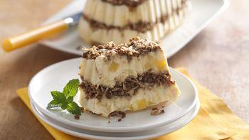 Tropical Frozen Dessert