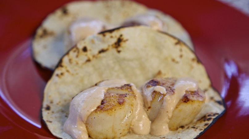 Scallop Tacos in Creamy Chipotle Sauce