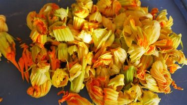 Zucchini Flower Pupusas