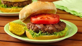 Grilled Unsloppy Joe Burgers