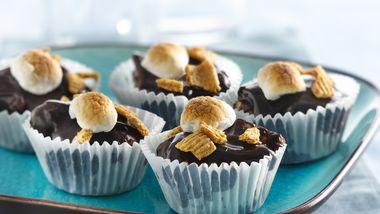 Refrigerator S'mores Mini Cakes