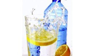 Easy Fruity Water