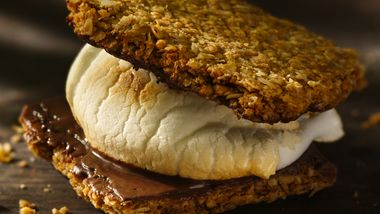 Chocolate Granola Thin S'mores