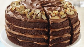 Chocolate Mocha Mousse Torte