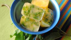 Citrus Ice Cubes