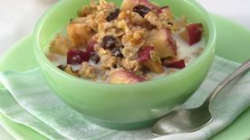 Heart Healthy Cookbook Apple Oatmeal