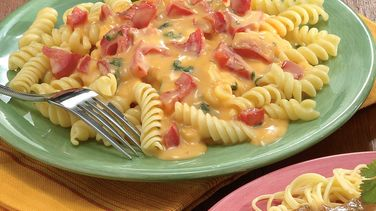 Cheesy Salsa Sauce