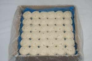 Case / box inside view