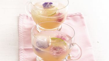 Grapefruit Citrus Cooler