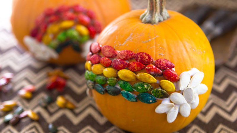 Rainbow Pumpkin Seed Craft