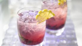 Gluten-Free Blueberry Hard Lemonade