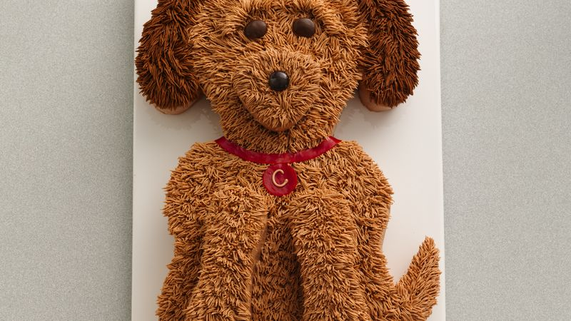 Cute Golden Doodle Dog Cake Recipe BettyCrockercom