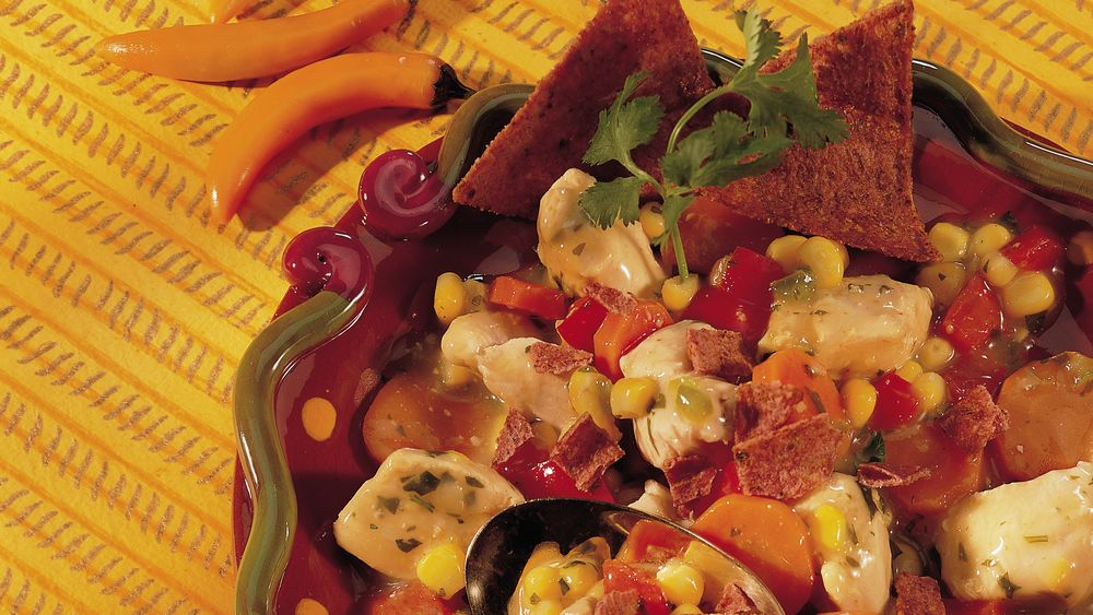 Southwest Chicken and Chili Stew