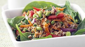 Skinny Thai Salad with Peanut Dressing