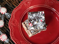 Dark Chocolate and Peppermint Squares