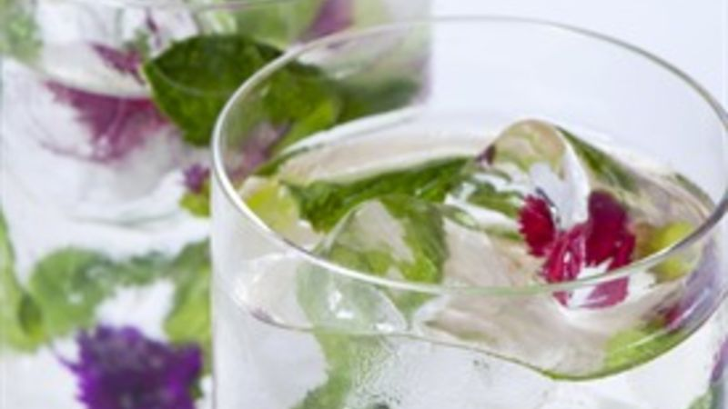 Elderflower Mojito Cocktail