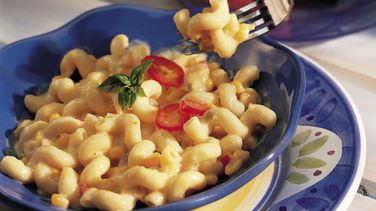 Southwest Cheese and Pasta