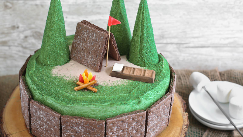 Double Chocolate Smores Camp Cake