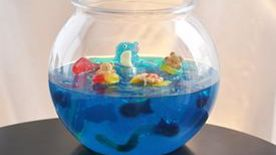 Jello Shot Gummy Fish Bowl