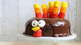 Chocolate-Dipped Marshmallow Turkey Cake