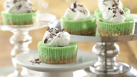 Mini Grasshopper Cheesecakes