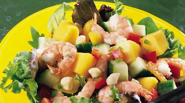 Shrimp and Mango Salad